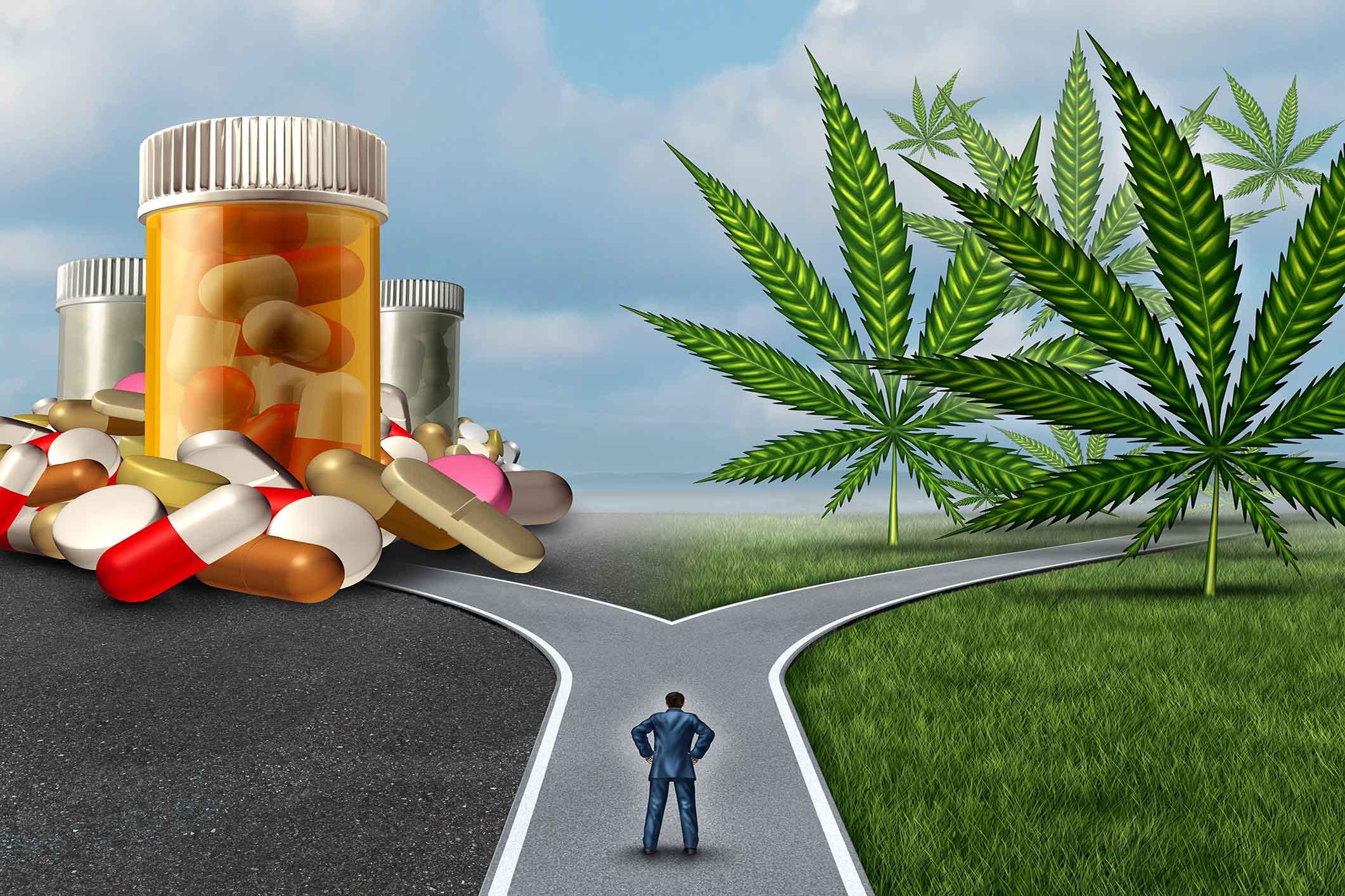 marijuana a gateway drug? - medical marijuana of southern california